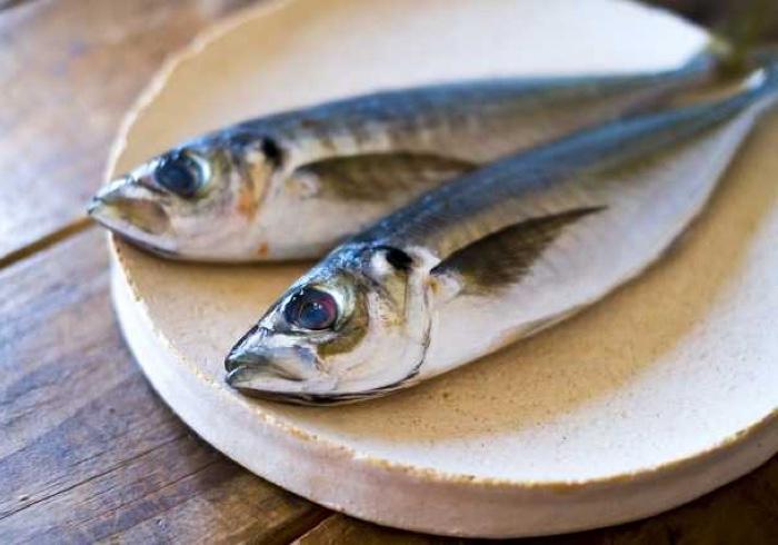 これで魚ギライも回避?!親子で楽しみながら一緒に魚を食べてみよう