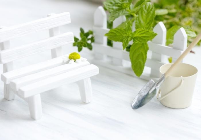 育てやすくお料理にも活躍するハーブ!家庭菜園におすすめのハーブ5選と活用レシピ