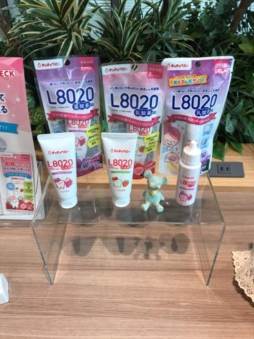 歯磨き_乳酸菌