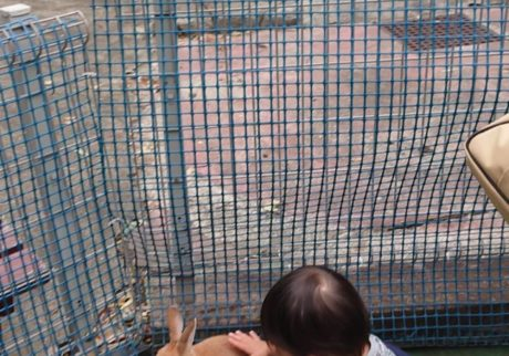 【チュートリアル福田の育児エッセイ・43】息子の初めての運動会にパパは参加できず……。