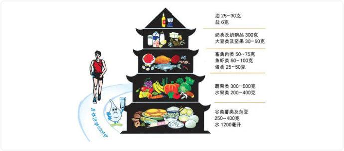 4-3中国フードピラミッド