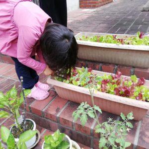 新型コロナで中国から退避中の子ども達