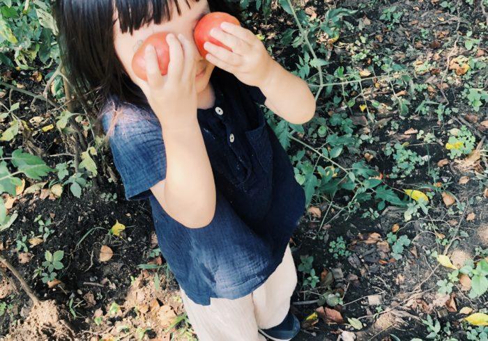 種を蒔いて、はじめての野菜作り【親子ではじめる、エシカル暮らし・15】