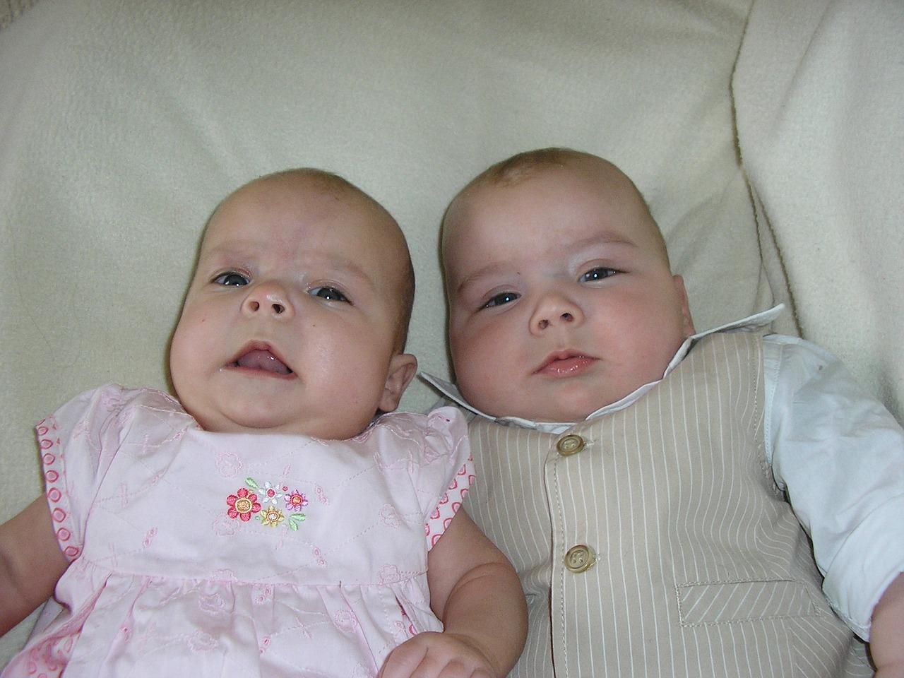 双子 双生児 の 一 性 卵 男女