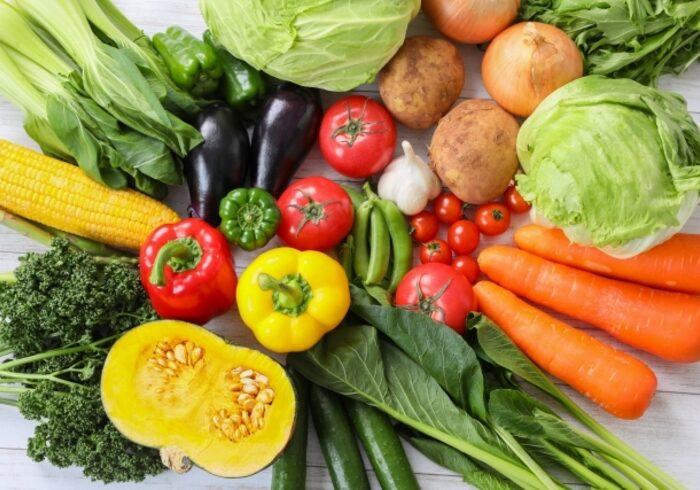 育脳に良い食事ってあるの?脳の成長に欠かせない栄養素を紹介
