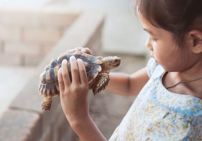 赤ちゃんとペットが同居するメリット&デメリット。 トラブルをなくすためにできることを解説