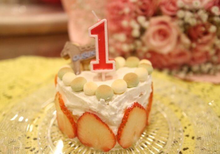1歳の誕生日ケーキはどうする?入手方法や手作りのアイデアを紹介
