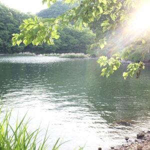 湖のクリーンアップと62%【親子ではじめるエシカル暮らし・30】