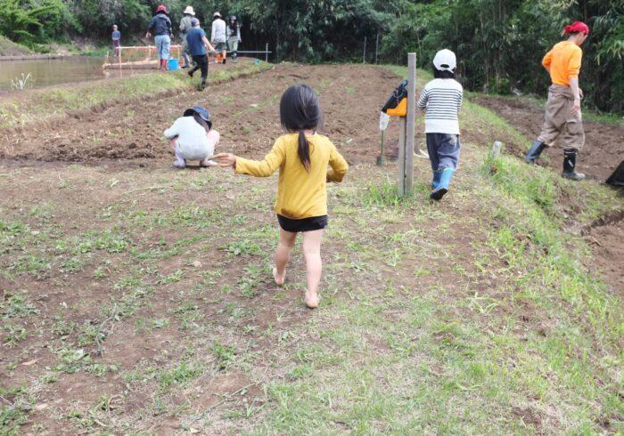 お米作りで出会った「田んぼの神様」【親子ではじめるエシカル暮らし・32】