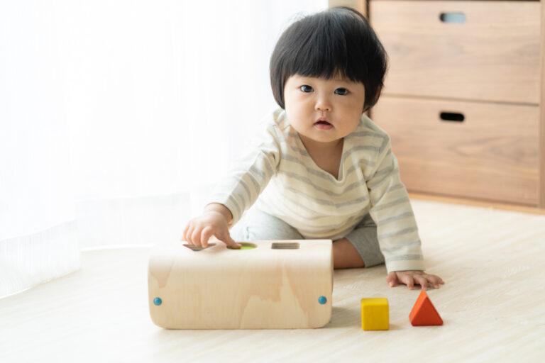 同じ形のブロックを箱に入れて遊ぶおもちゃを手にする赤ちゃん