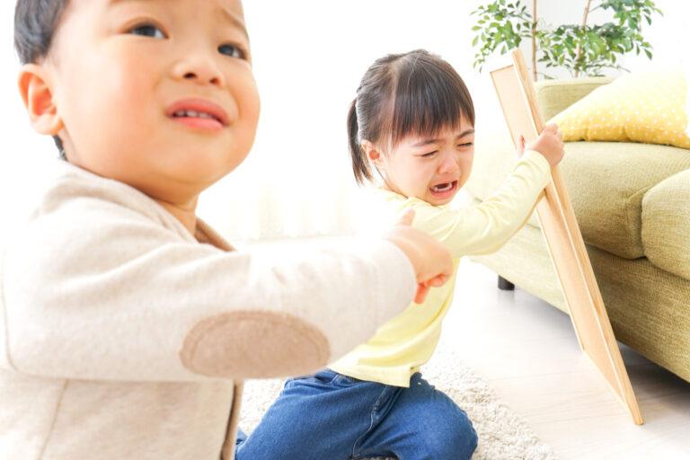 ひとつのおもちゃを奪い合って激しく泣く子どもと誰かに訴える子ども