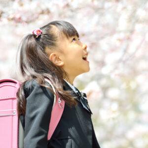 桜の木の下でピンクのランドセルを背負う新一年生